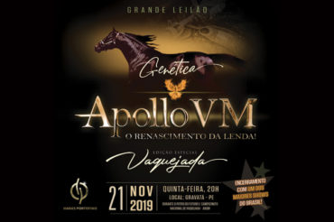Leilão Genética Apollo VM 2019